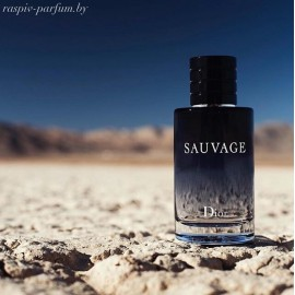 Christian Dior Sauvage 2015 edt